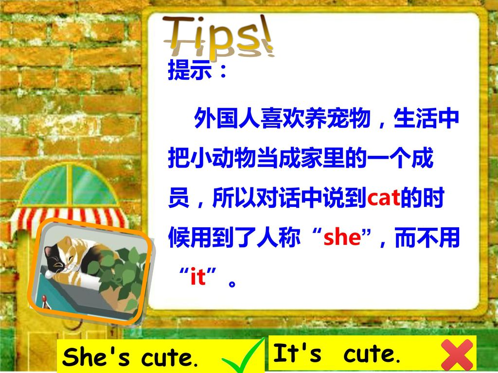 Tips! It s cute. She s cute. 提示: