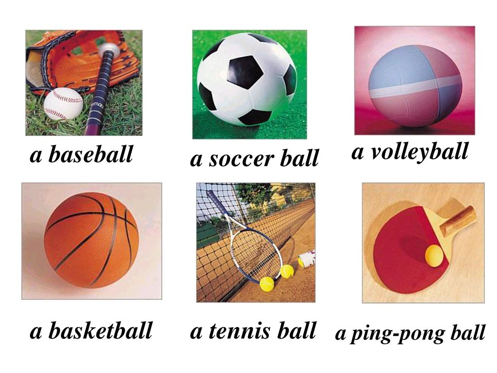 a baseball a volleyball a soccer ball a basketball a tennis ball