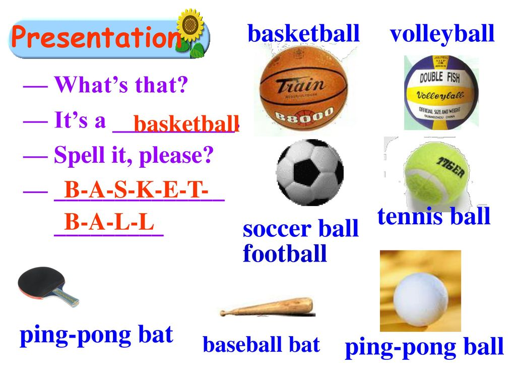 Presentation basketball volleyball tennis ball soccer ball football
