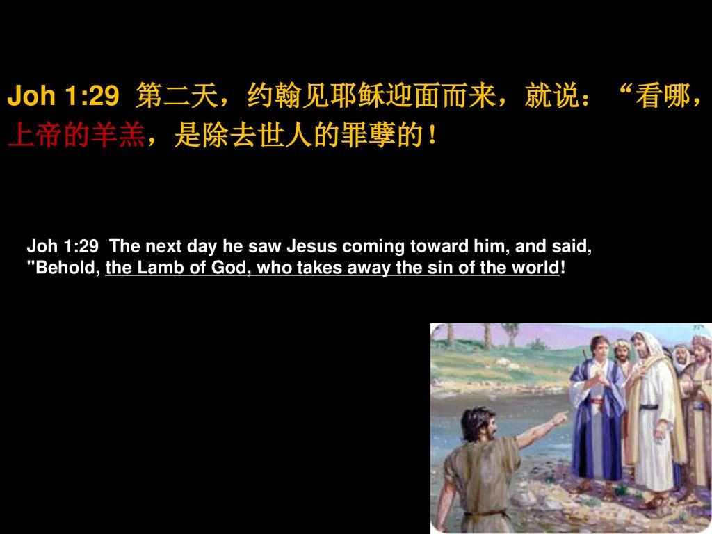 "Image result for ""第二天,约翰见耶稣迎面而来,就说:""看哪,神的羊羔,是除去世人罪孽的!"" ( 约 1:29)"