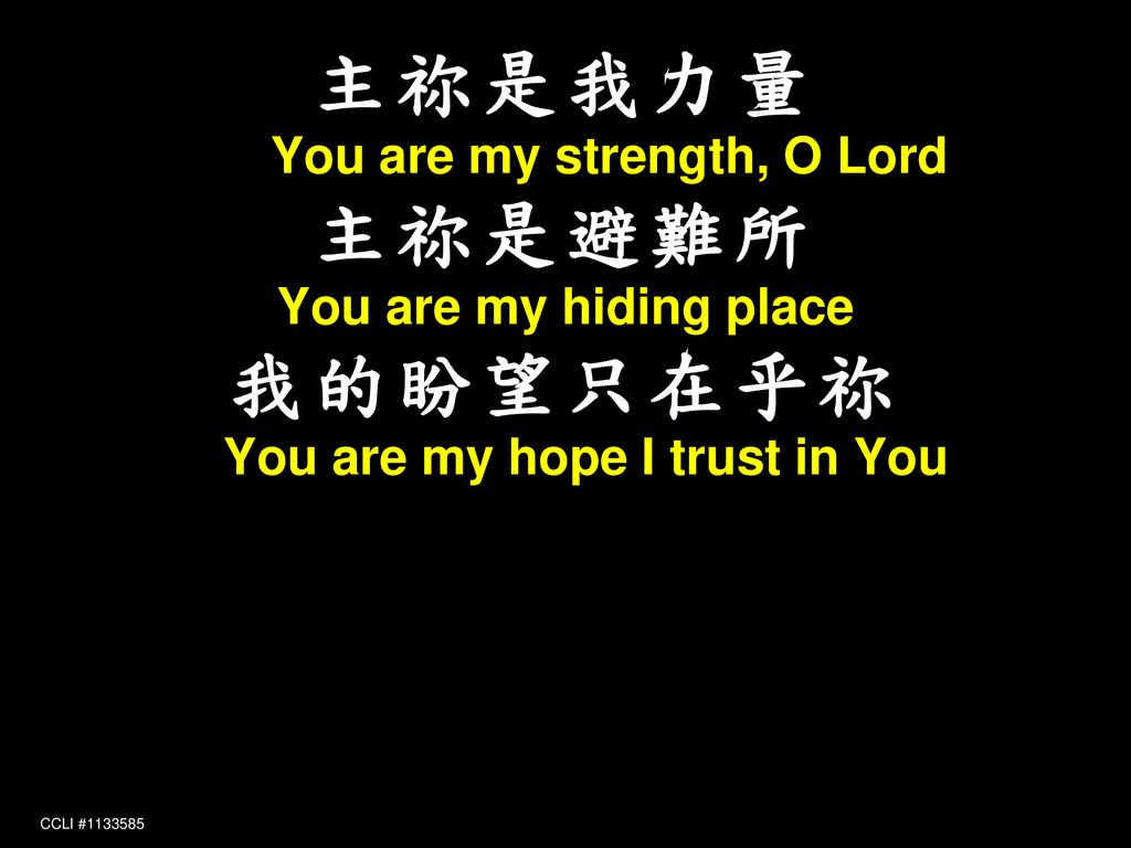 主祢是我力量 You are my strength, O Lord 主祢是避難所