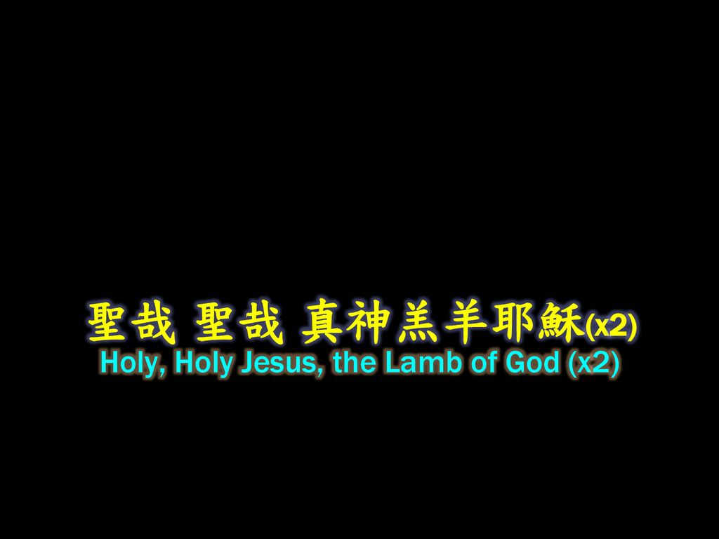 Holy, Holy Jesus, the Lamb of God (x2)