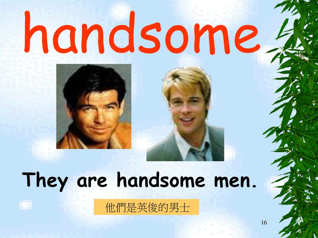 handsome They are handsome men. 他們是英俊的男士