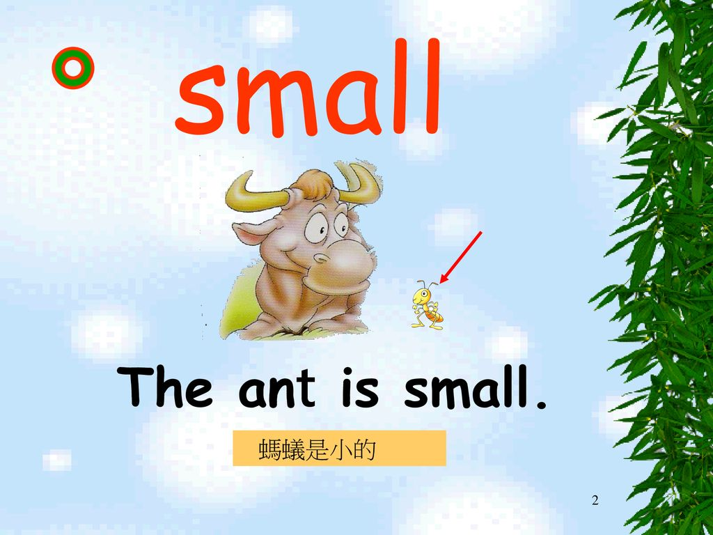 small The ant is small. 螞蟻是小的